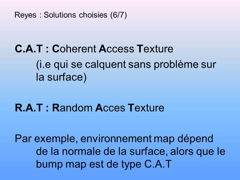 Reyes : Solutions choisies (6/7) C.A.T : Coherent Access Texture (i.e qui se calquent sans problème sur la surface) R.A.T : Random Acces Texture Par e