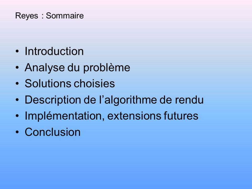 Reyes : Sommaire Introduction Analyse du problème Solutions choisies Description de lalgorithme de rendu Implémentation, extensions futures Conclusion