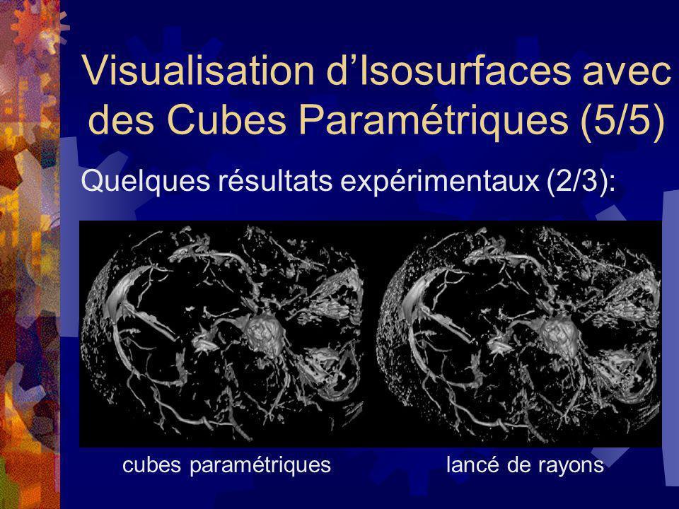 Visualisation dIsosurfaces avec des Cubes Paramétriques (5/5) Quelques résultats expérimentaux (2/3): cubes paramétriques lancé de rayons