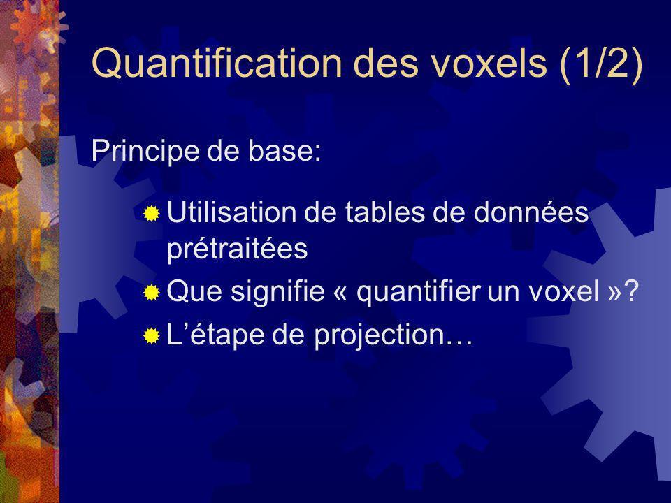 Quantification des voxels (2/2) Restriction à une projection orthographique Regroupement des voxels en classes avec un minimum derreurs Pré-traitement possible des voxels quantifiés Accélération de létape de projection: