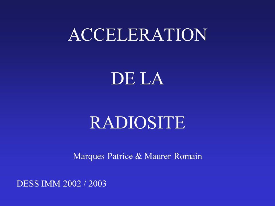 Marques Patrice & Maurer Romain DESS IMM 2002 / 2003 ACCELERATION DE LA RADIOSITE
