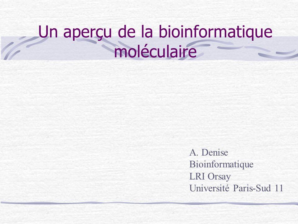 Un aperçu de la bioinformatique moléculaire A. Denise Bioinformatique LRI Orsay Université Paris-Sud 11