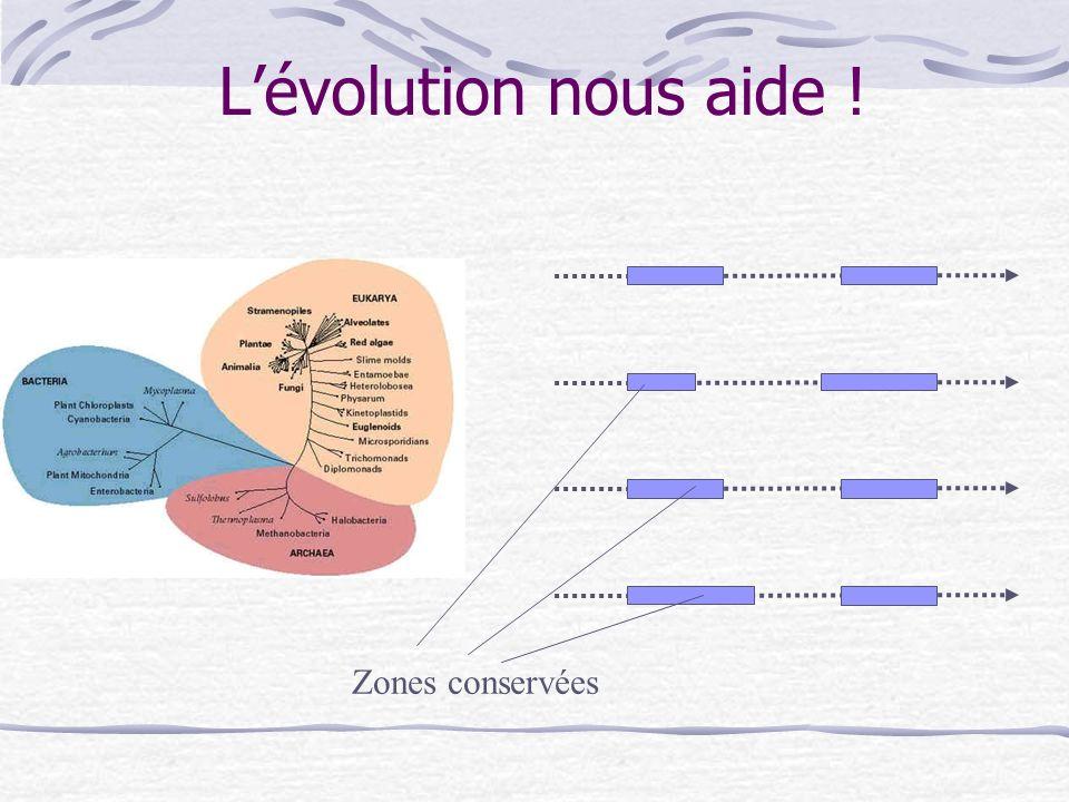 Lévolution nous aide ! Zones conservées