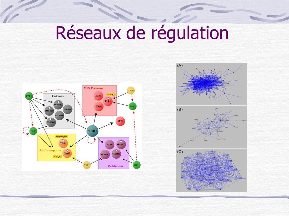 Réseaux de régulation