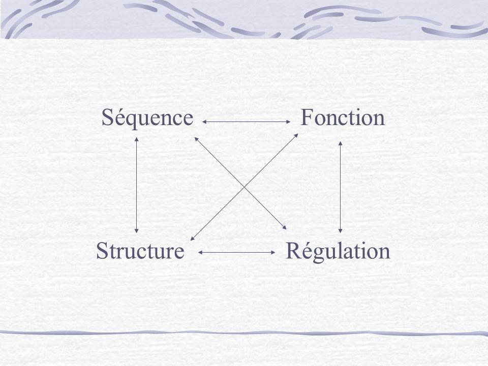 SéquenceFonction StructureRégulation