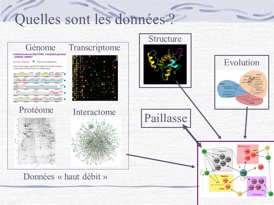 Paillasse Structure Evolution Interactome TranscriptomeGénome Protéome Données « haut débit » Quelles sont les données ?