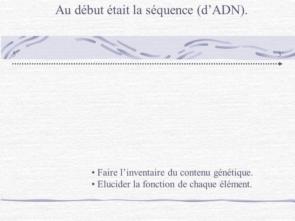 Au début était la séquence (dADN). 53 Faire linventaire du contenu génétique. Elucider la fonction de chaque élément.