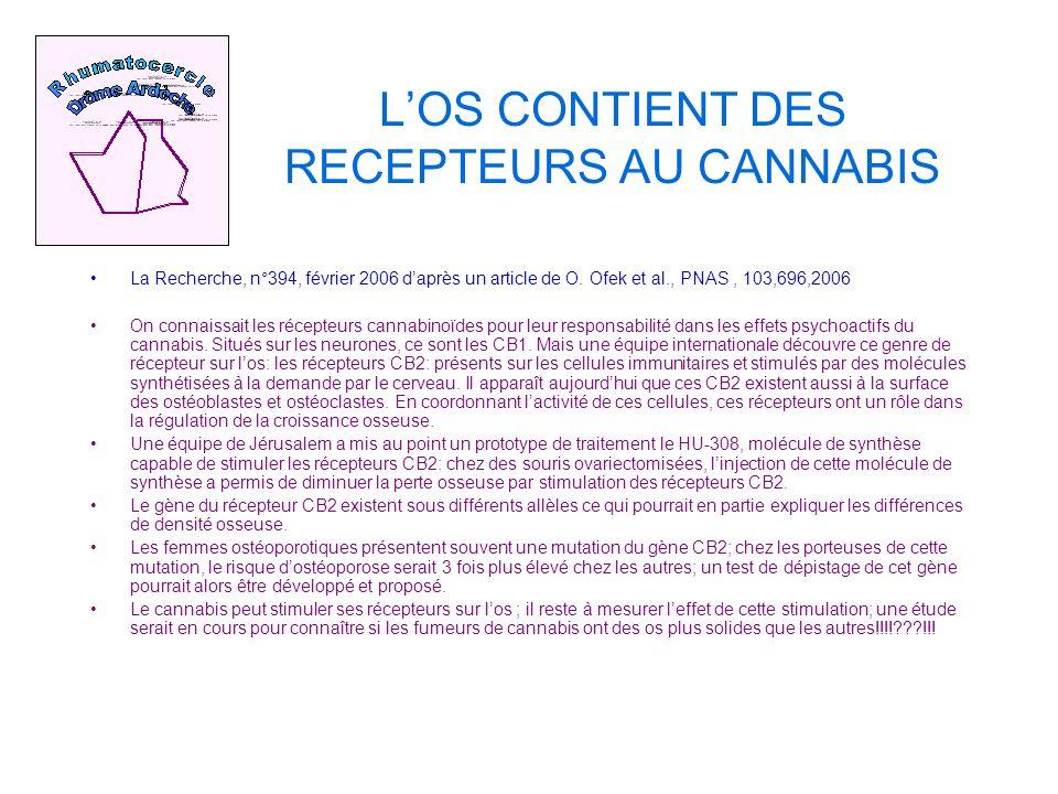 LOS CONTIENT DES RECEPTEURS AU CANNABIS La Recherche, n°394, février 2006 daprès un article de O.