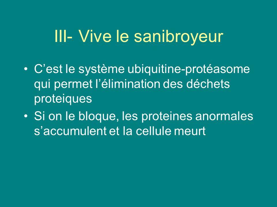 III- Vive le sanibroyeur Cest le système ubiquitine-protéasome qui permet lélimination des déchets proteiques Si on le bloque, les proteines anormales