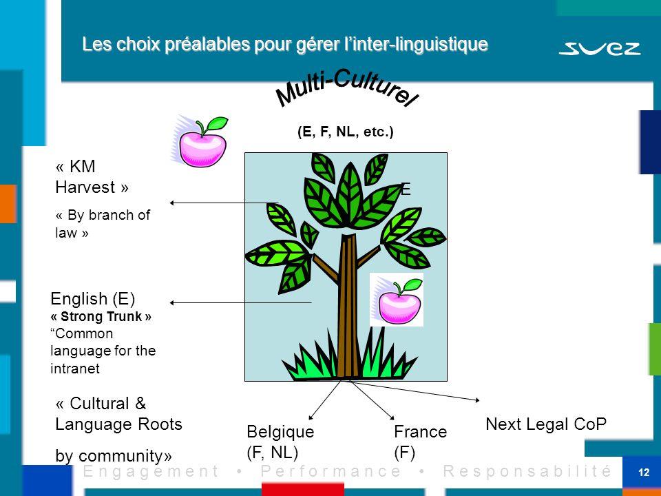 E n g a g e m e n t P e r f o r m a n c e R e s p o n s a b i l i t é 12 Les choix préalables pour gérer linter-linguistique France (F) Belgique (F, N