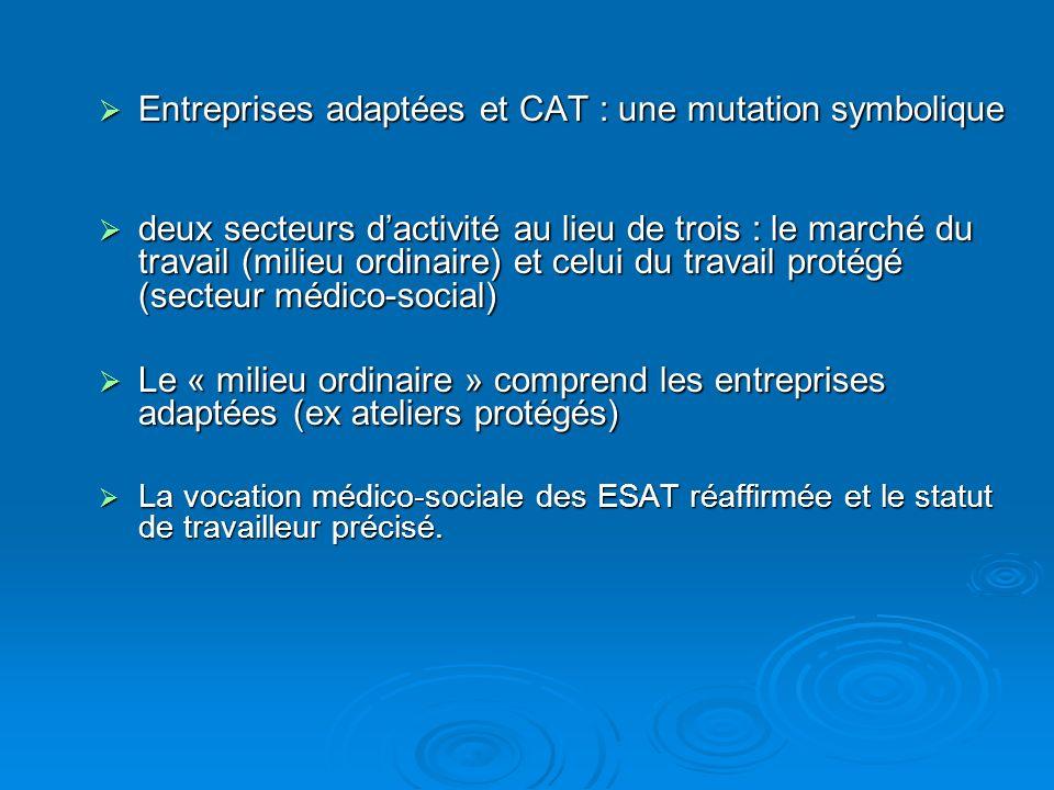 Entreprises adaptées et CAT : une mutation symbolique Entreprises adaptées et CAT : une mutation symbolique deux secteurs dactivité au lieu de trois :
