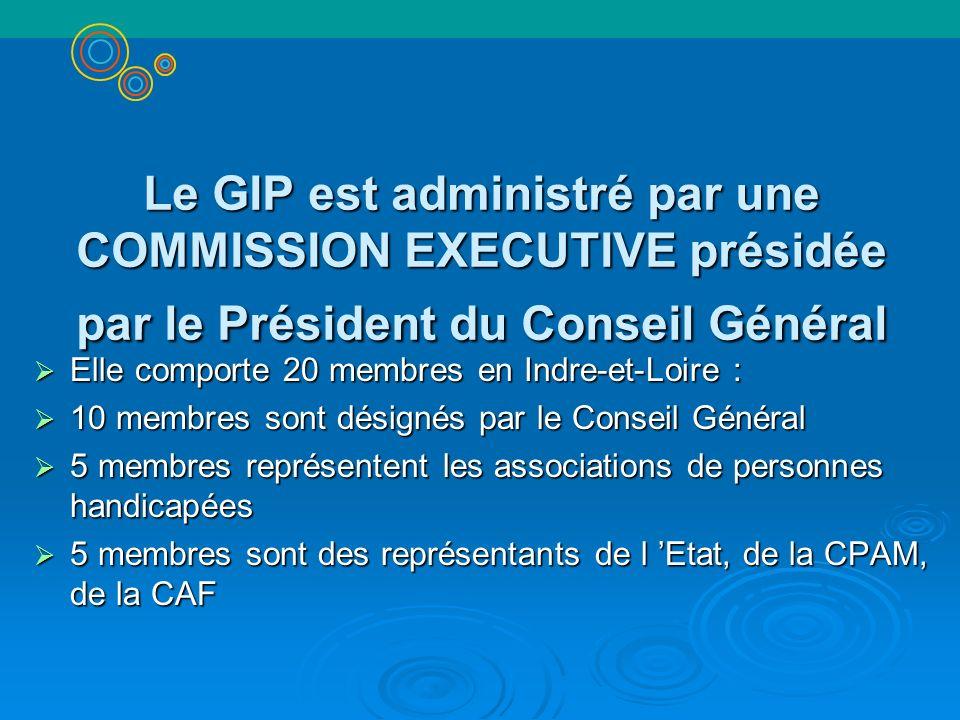 Le GIP est administré par une COMMISSION EXECUTIVE présidée par le Président du Conseil Général Elle comporte 20 membres en Indre-et-Loire : Elle comp