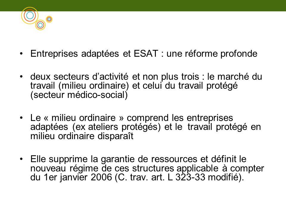Entreprises adaptées et ESAT : une réforme profonde deux secteurs dactivité et non plus trois : le marché du travail (milieu ordinaire) et celui du tr