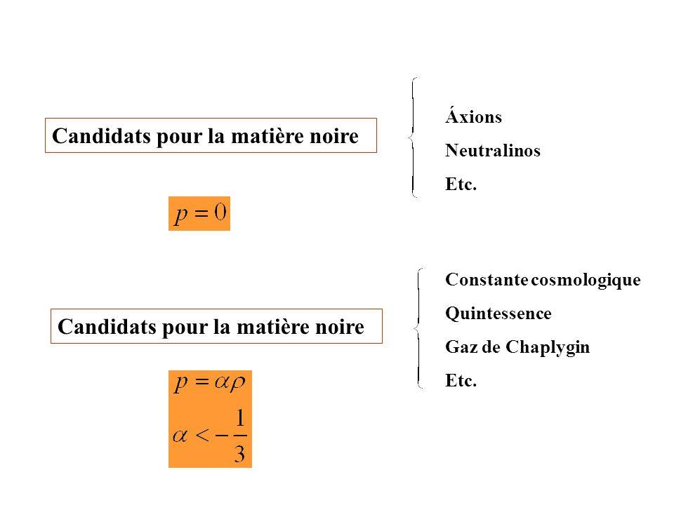 Candidats pour la matière noire Constante cosmologique Quintessence Gaz de Chaplygin Etc.