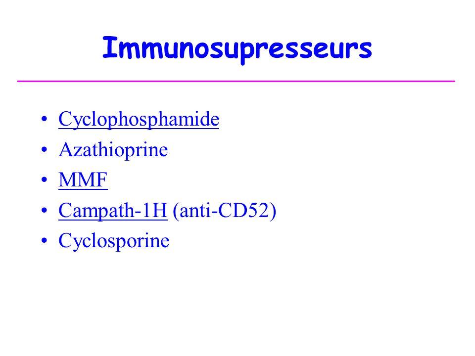 Immunosupresseurs Cyclophosphamide Azathioprine MMF Campath-1H (anti-CD52) Cyclosporine