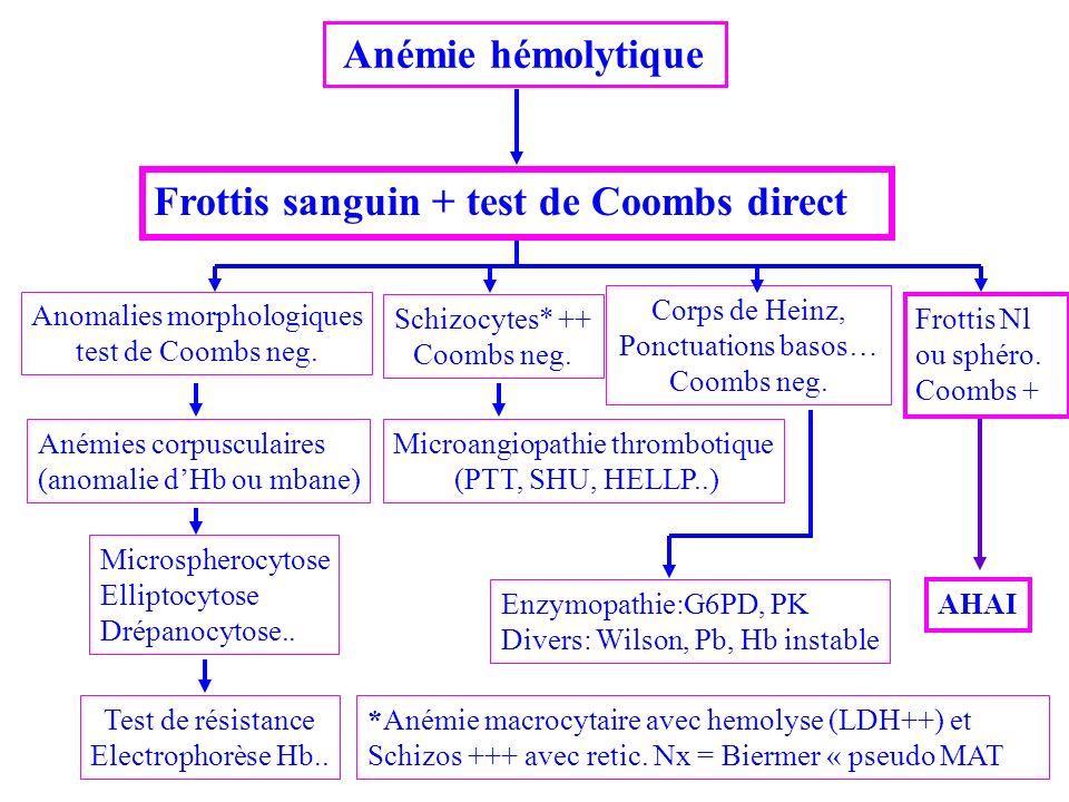 Anémie hémolytique Frottis sanguin + test de Coombs direct Anomalies morphologiques test de Coombs neg. Anémies corpusculaires (anomalie dHb ou mbane)