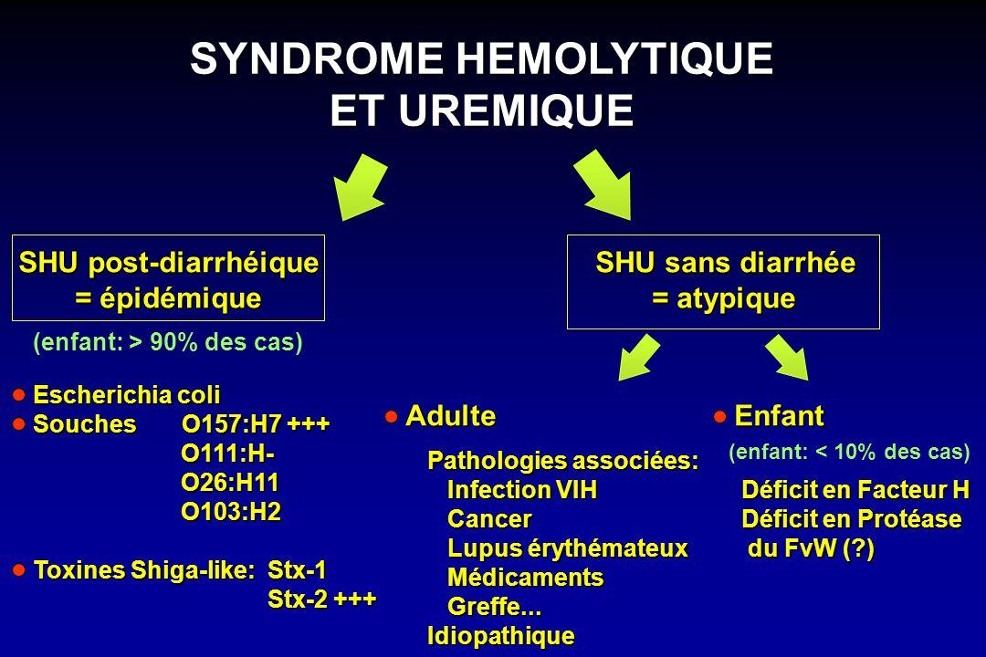 SHU post-diarrhéique = épidémique Escherichia coli Souches O157:H7 +++ O111:H- O111:H- O26:H11 O26:H11 O103:H2 O103:H2 Toxines Shiga-like: Stx-1 Stx-2