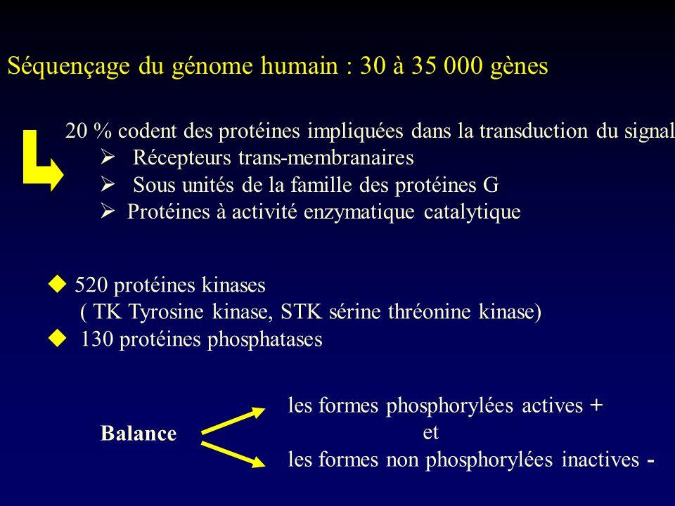 Séquençage du génome humain : 30 à 35 000 gènes 20 % codent des protéines impliquées dans la transduction du signal Récepteurs trans-membranaires Sous
