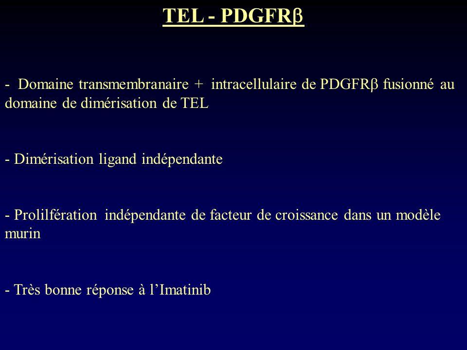 TEL - PDGFR - Domaine transmembranaire + intracellulaire de PDGFR fusionné au domaine de dimérisation de TEL - Dimérisation ligand indépendante - Prol