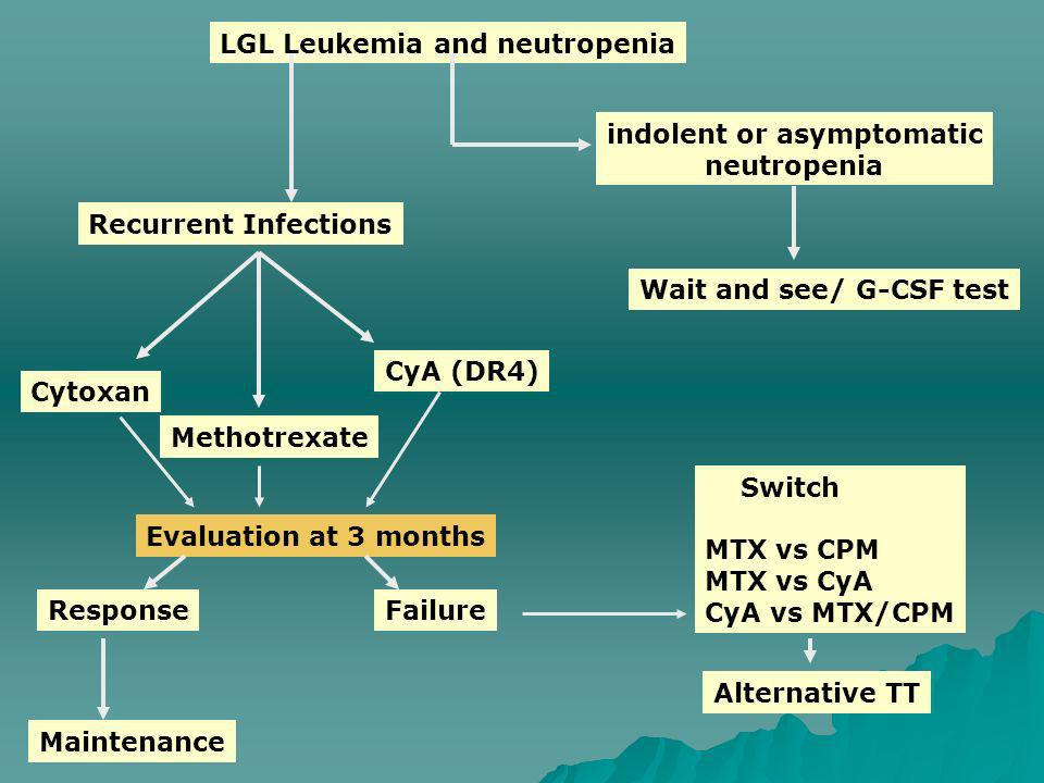 LGL Leukemia and neutropenia indolent or asymptomatic neutropenia Wait and see/ G-CSF test Recurrent Infections Cytoxan CyA (DR4) Methotrexate Evaluat