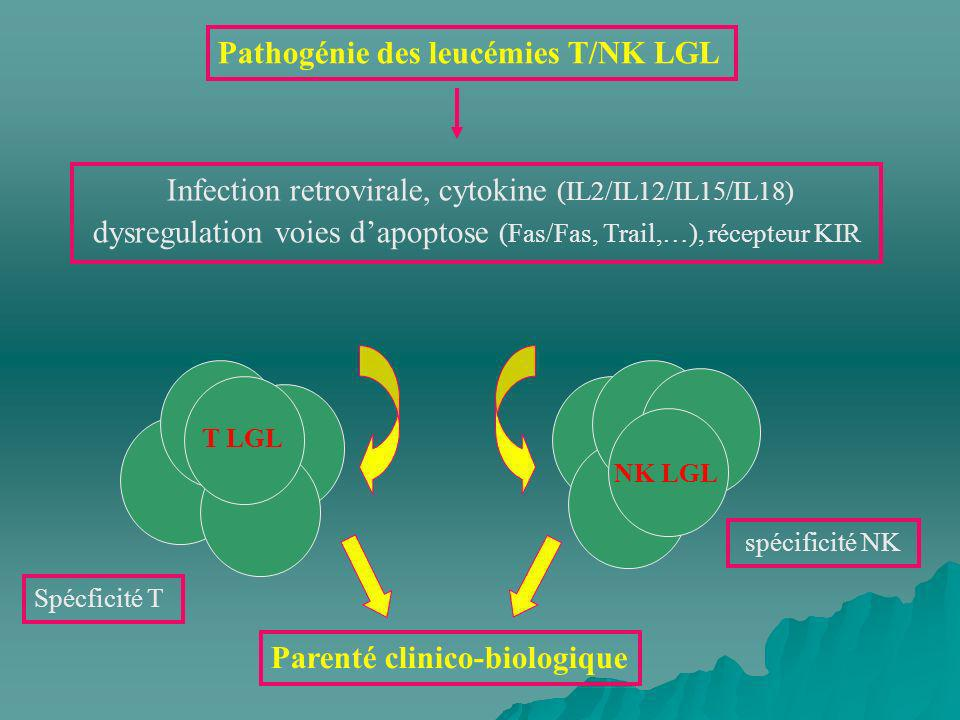 NK LGL T LGL Pathogénie des leucémies T/NK LGL Infection retrovirale, cytokine (IL2/IL12/IL15/IL18) dysregulation voies dapoptose (Fas/Fas, Trail,…),