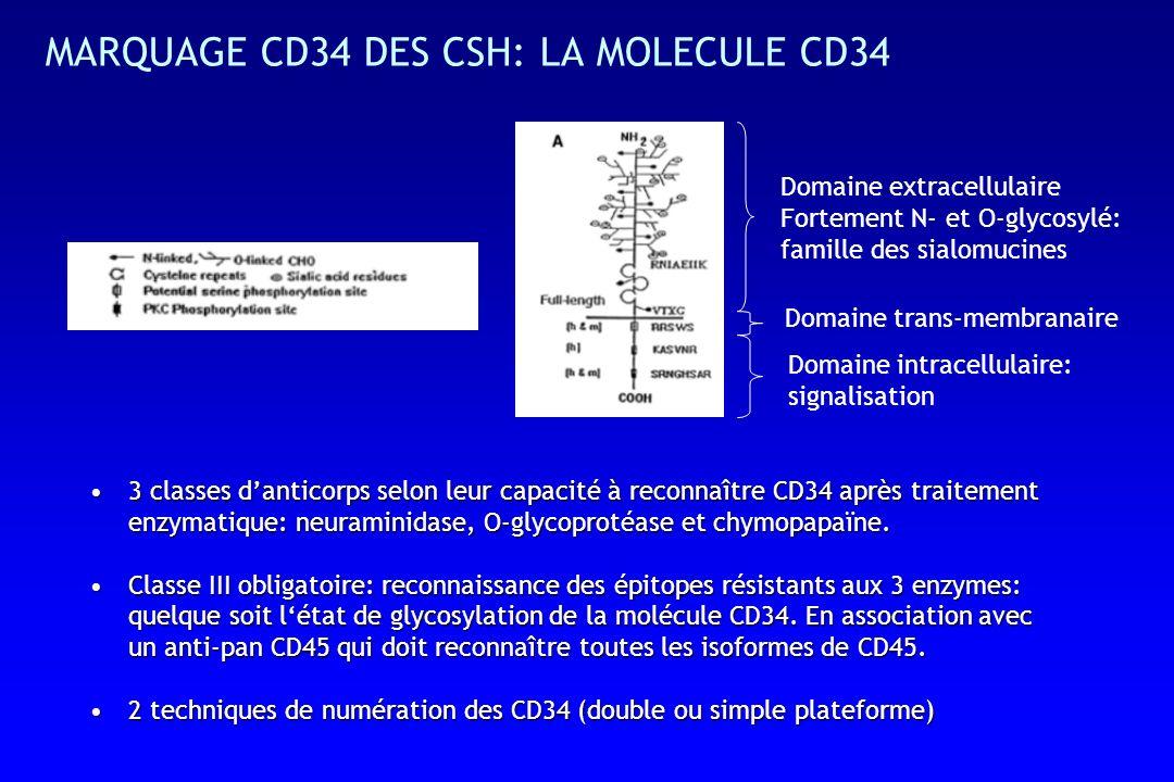 MARQUAGE CD34 DES CSH: LA MOLECULE CD34 Domaine extracellulaire Fortement N- et O-glycosylé: famille des sialomucines Domaine trans-membranaire Domaine intracellulaire: signalisation 3 classes danticorps selon leur capacité à reconnaître CD34 après traitement enzymatique: neuraminidase, O-glycoprotéase et chymopapaïne.3 classes danticorps selon leur capacité à reconnaître CD34 après traitement enzymatique: neuraminidase, O-glycoprotéase et chymopapaïne.