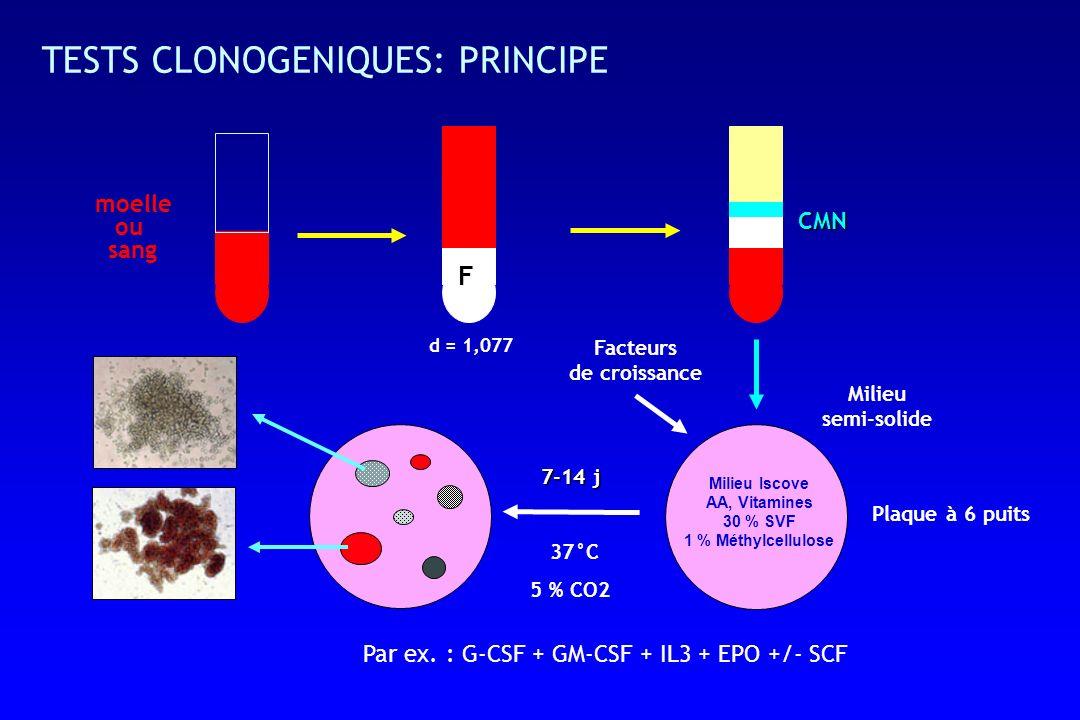 TESTS CLONOGENIQUES: PRINCIPE 37°C 5 % CO2 7-14 j moelle ou sang d = 1,077 CMN Milieu semi-solide Milieu Iscove AA, Vitamines 30 % SVF 1 % Méthylcellulose Par ex.