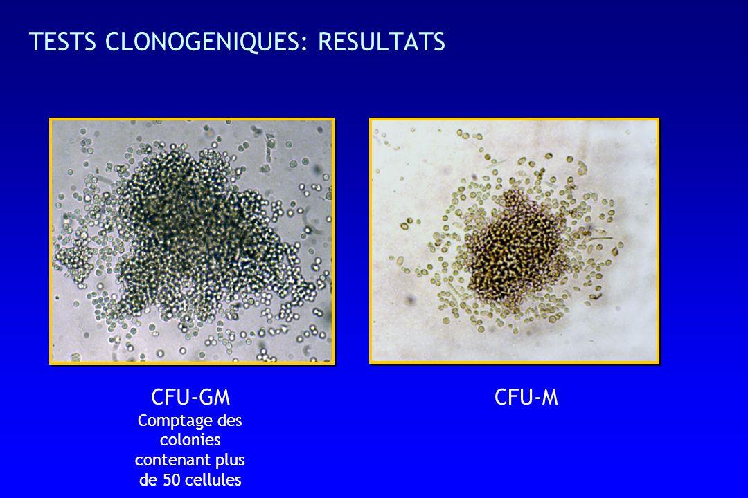 CFU-GM Comptage des colonies contenant plus de 50 cellules CFU-M TESTS CLONOGENIQUES: RESULTATS