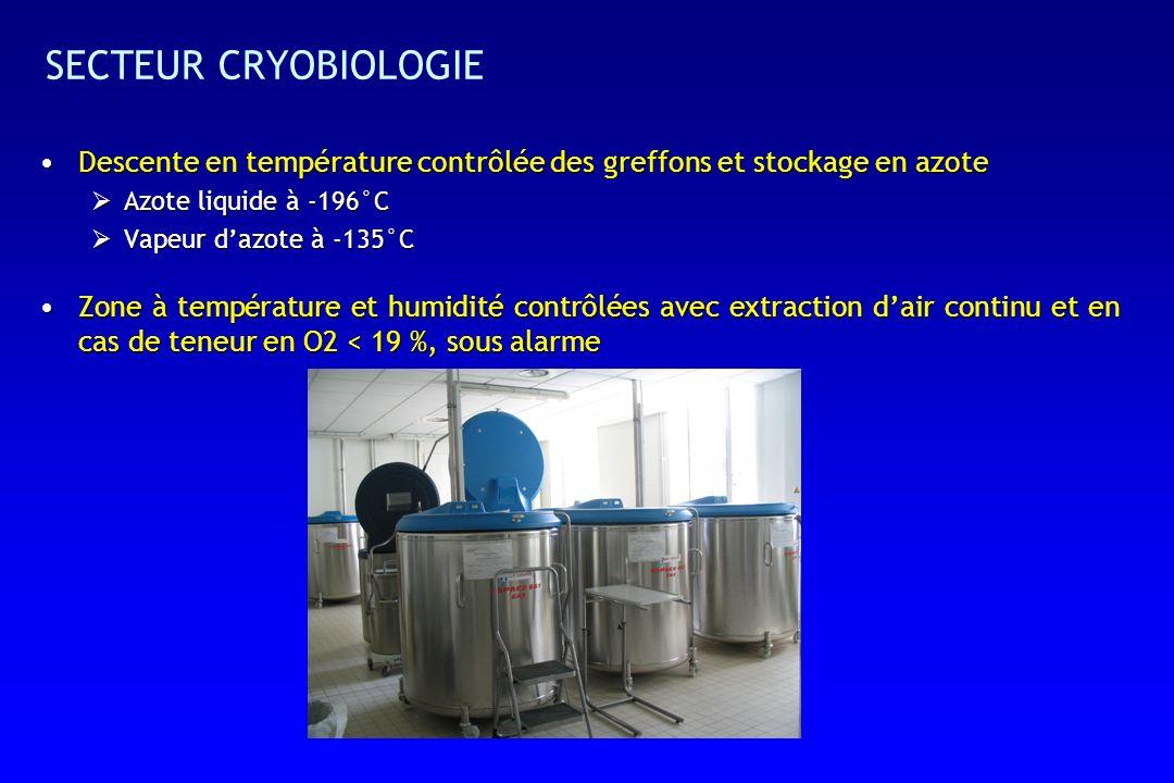 SECTEUR CRYOBIOLOGIE Descente en température contrôlée des greffons et stockage en azoteDescente en température contrôlée des greffons et stockage en azote Azote liquide à -196°C Azote liquide à -196°C Vapeur dazote à -135°C Vapeur dazote à -135°C Zone à température et humidité contrôlées avec extraction dair continu et en cas de teneur en O2 < 19 %, sous alarmeZone à température et humidité contrôlées avec extraction dair continu et en cas de teneur en O2 < 19 %, sous alarme