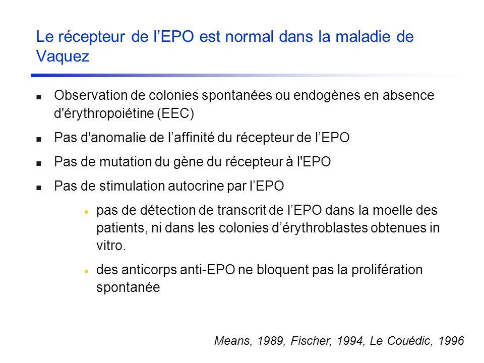 Le récepteur de lEPO est normal dans la maladie de Vaquez Observation de colonies spontanées ou endogènes en absence d'érythropoiétine (EEC) Pas d'ano