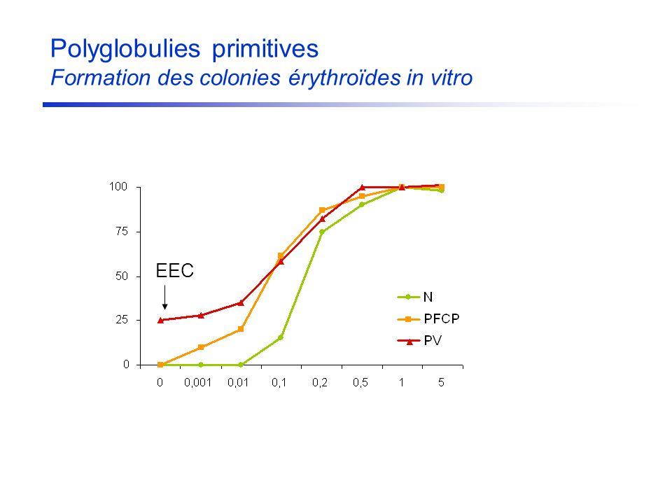 Polyglobulies primitives Formation des colonies érythroïdes in vitro EEC