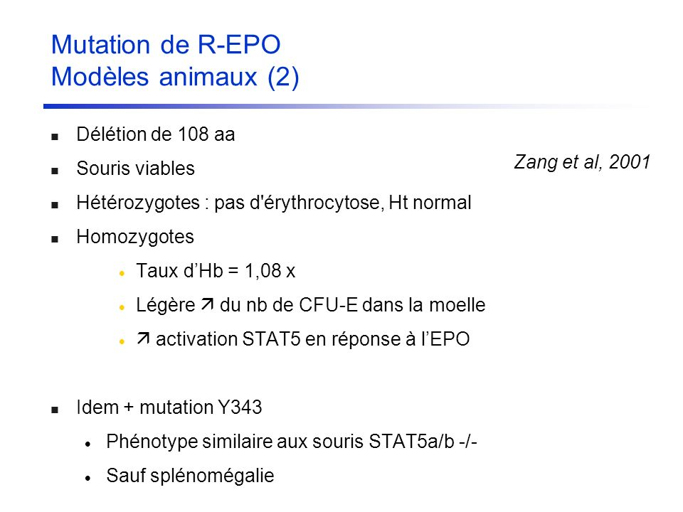 Zang et al, 2001 Mutation de R-EPO Modèles animaux (2) Délétion de 108 aa Souris viables Hétérozygotes : pas d'érythrocytose, Ht normal Homozygotes Ta
