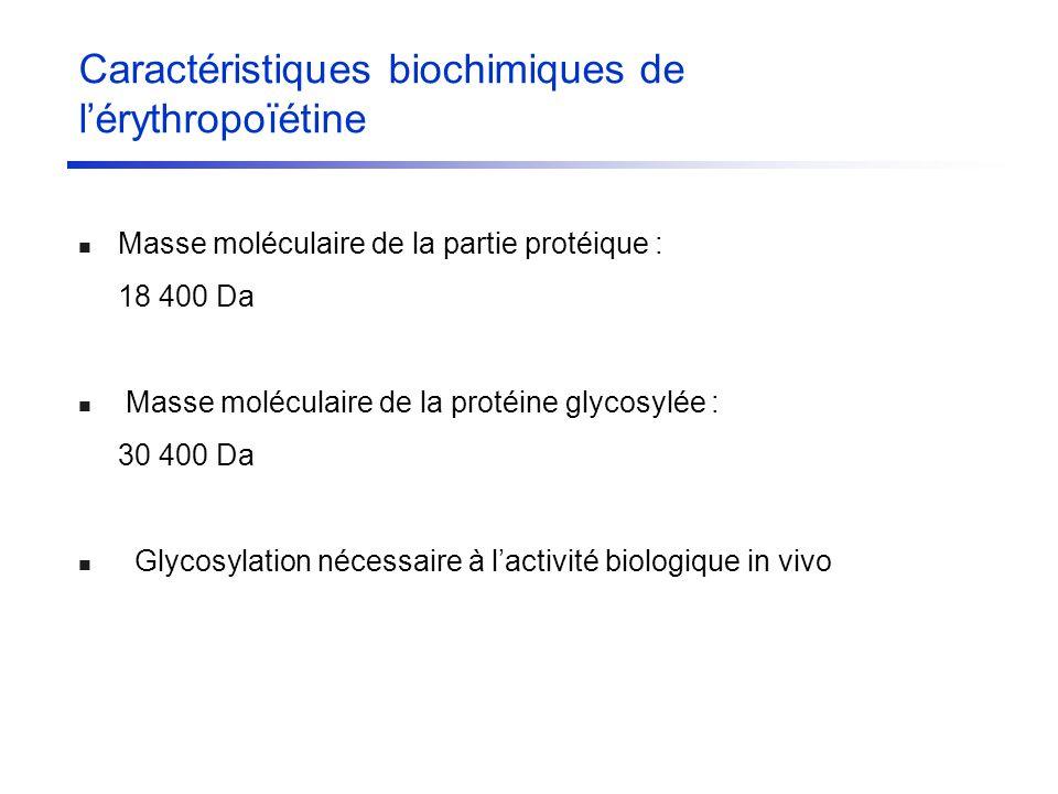 Caractéristiques biochimiques de lérythropoïétine Masse moléculaire de la partie protéique : 18 400 Da Masse moléculaire de la protéine glycosylée : 3