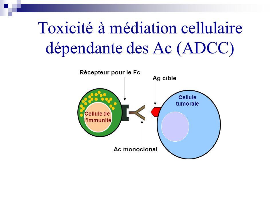 Toxicité à médiation cellulaire dépendante des Ac (ADCC) Cellule de limmunité Cellule tumorale Ag cible Ac monoclonal Récepteur pour le Fc