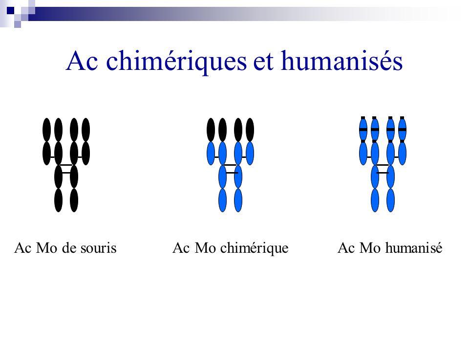 Ac chimériques et humanisés Ac Mo de souris Ac Mo chimérique Ac Mo humanisé