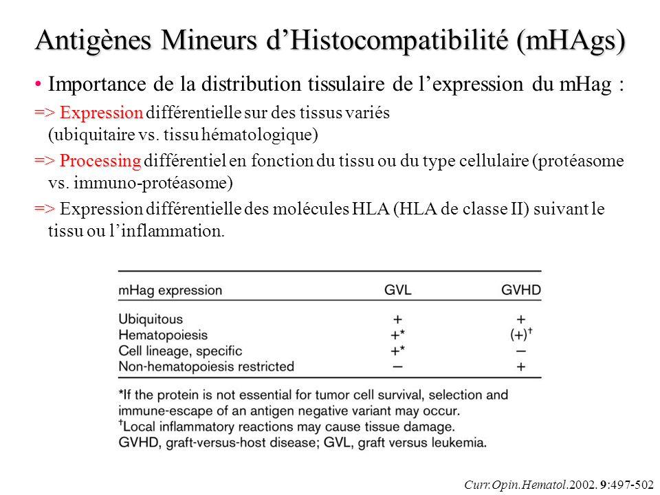 Curr.Opin.Hematol.2002. 9:497-502 Importance de la distribution tissulaire de lexpression du mHag : =>Expression => Expression différentielle sur des