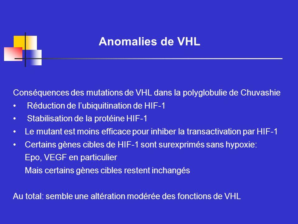 Anomalies de VHL Conséquences des mutations de VHL dans la polyglobulie de Chuvashie Réduction de lubiquitination de HIF-1 Stabilisation de la protéin