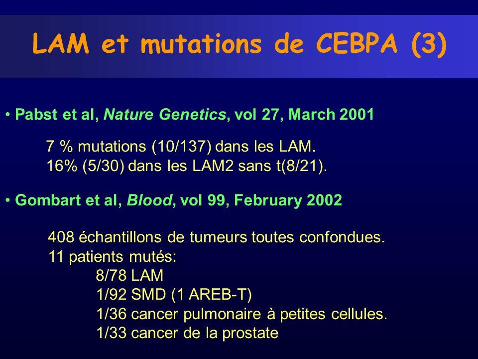 LAM et mutations de CEBPA (3) Pabst et al, Nature Genetics, vol 27, March 2001 7 % mutations (10/137) dans les LAM. 16% (5/30) dans les LAM2 sans t(8/