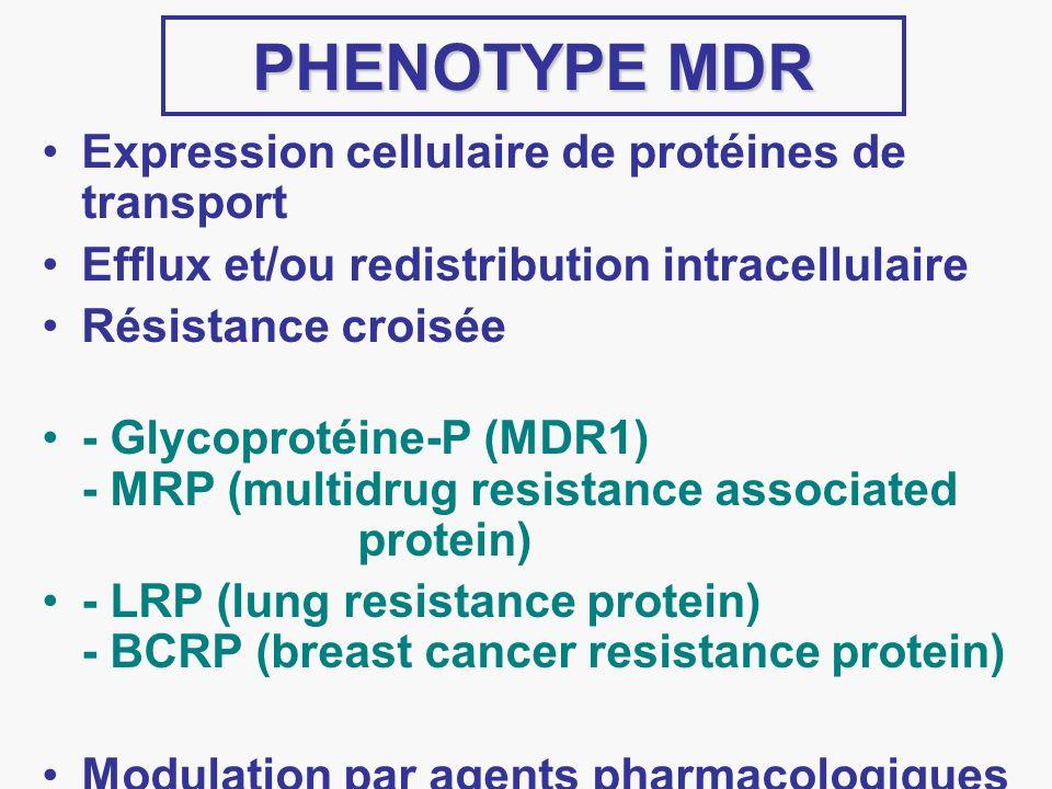 PHENOTYPE MDR Expression cellulaire de protéines de transport Efflux et/ou redistribution intracellulaire Résistance croisée - Glycoprotéine-P (MDR1)