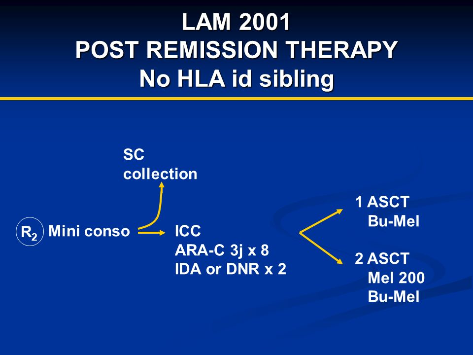 LAM 2001 POST REMISSION THERAPY No HLA id sibling R2R2 Mini conso SC collection 1 ASCT Bu-Mel 2 ASCT Mel 200 Bu-Mel ICC ARA-C 3j x 8 IDA or DNR x 2