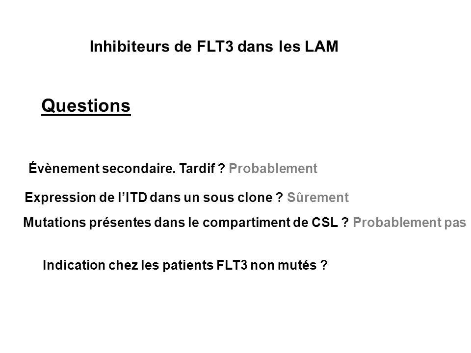 Inhibiteurs de FLT3 dans les LAM Questions Évènement secondaire. Tardif ? Probablement Expression de lITD dans un sous clone ? Sûrement Mutations prés