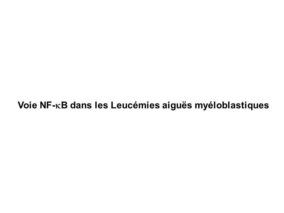 Voie NF- B dans les Leucémies aiguës myéloblastiques
