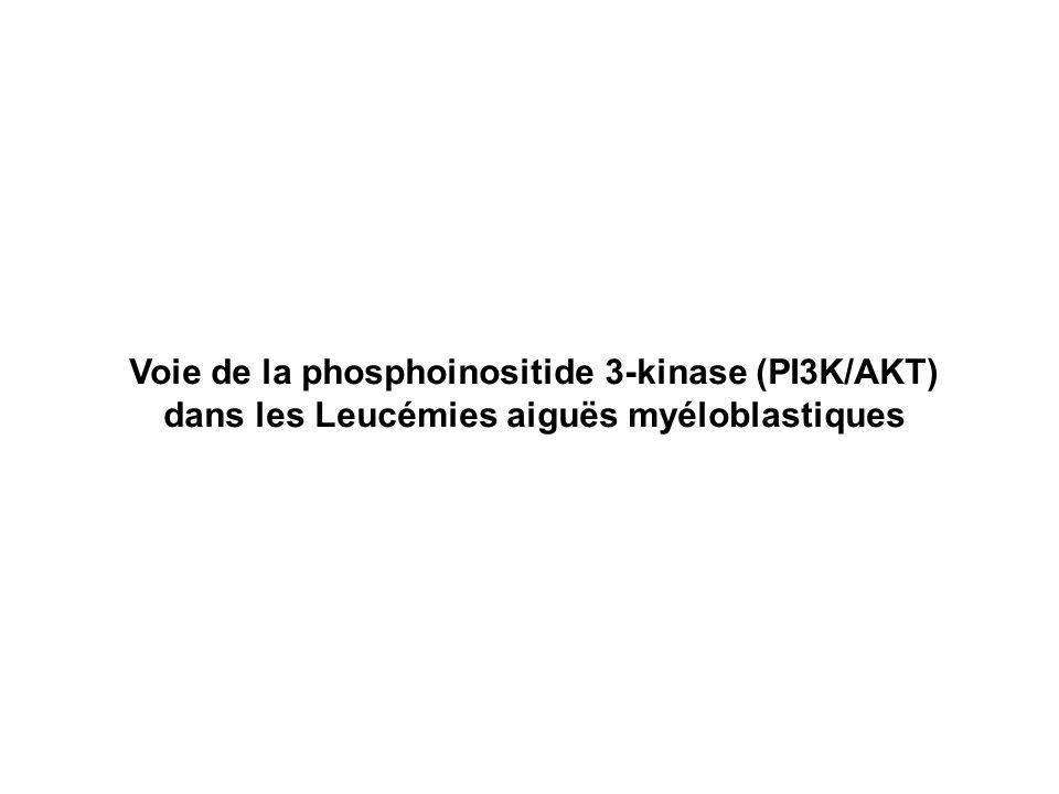 Voie de la phosphoinositide 3-kinase (PI3K/AKT) dans les Leucémies aiguës myéloblastiques