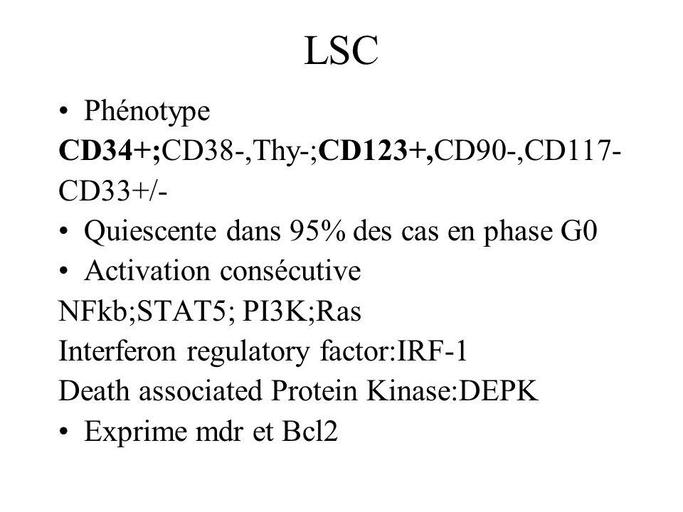 LSC Phénotype CD34+;CD38-,Thy-;CD123+,CD90-,CD117- CD33+/- Quiescente dans 95% des cas en phase G0 Activation consécutive NFkb;STAT5; PI3K;Ras Interferon regulatory factor:IRF-1 Death associated Protein Kinase:DEPK Exprime mdr et Bcl2