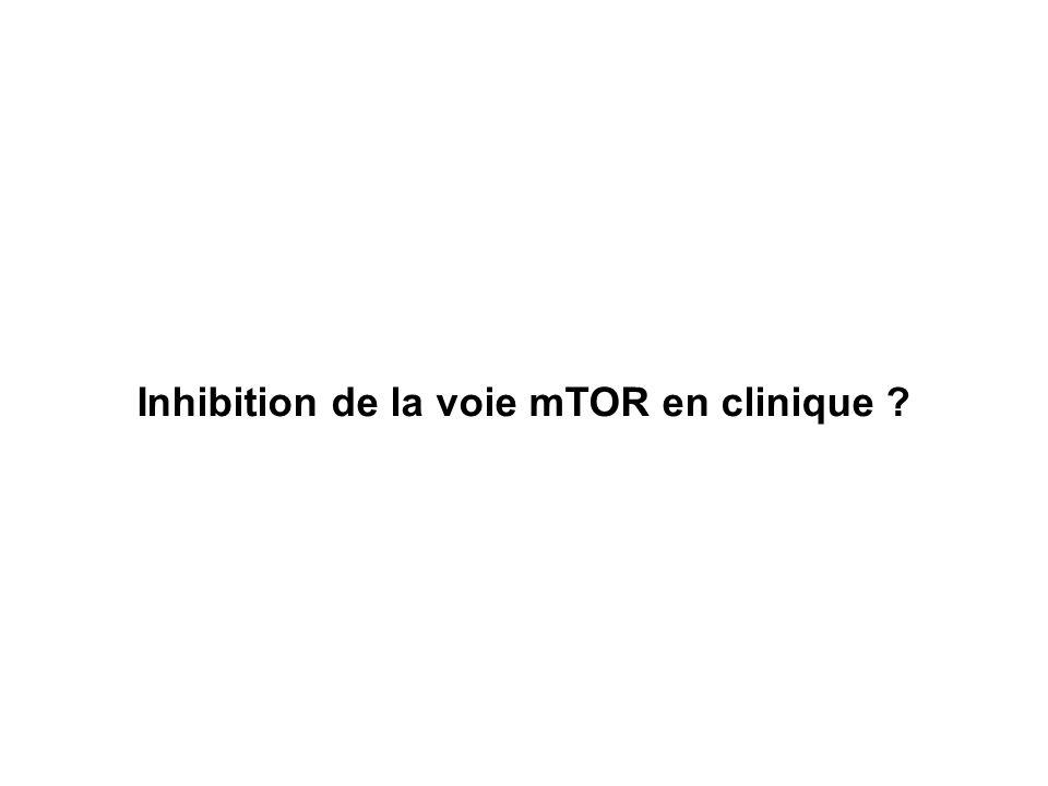 Inhibition de la voie mTOR en clinique ?