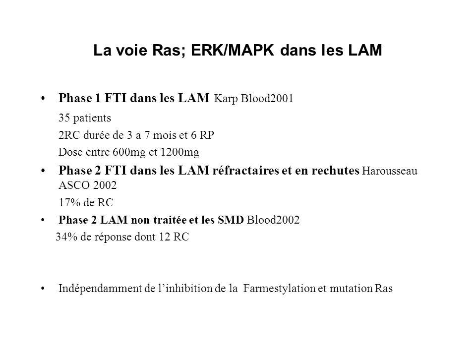 La voie Ras; ERK/MAPK dans les LAM Phase 1 FTI dans les LAM Karp Blood2001 35 patients 2RC durée de 3 a 7 mois et 6 RP Dose entre 600mg et 1200mg Phase 2 FTI dans les LAM réfractaires et en rechutes Harousseau ASCO 2002 17% de RC Phase 2 LAM non traitée et les SMD Blood2002 34% de réponse dont 12 RC Indépendamment de linhibition de la Farmestylation et mutation Ras