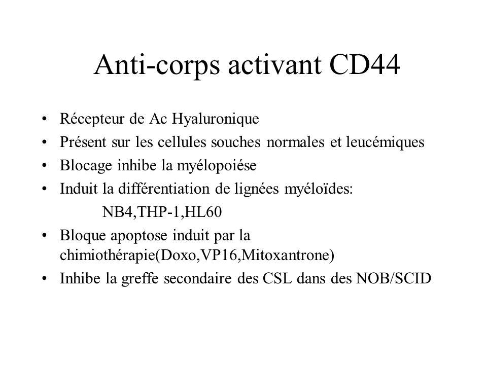 Anti-corps activant CD44 Récepteur de Ac Hyaluronique Présent sur les cellules souches normales et leucémiques Blocage inhibe la myélopoiése Induit la différentiation de lignées myéloïdes: NB4,THP-1,HL60 Bloque apoptose induit par la chimiothérapie(Doxo,VP16,Mitoxantrone) Inhibe la greffe secondaire des CSL dans des NOB/SCID