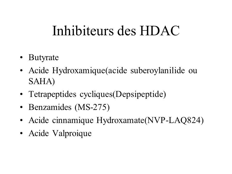 Inhibiteurs des HDAC Butyrate Acide Hydroxamique(acide suberoylanilide ou SAHA) Tetrapeptides cycliques(Depsipeptide) Benzamides (MS-275) Acide cinnamique Hydroxamate(NVP-LAQ824) Acide Valproique