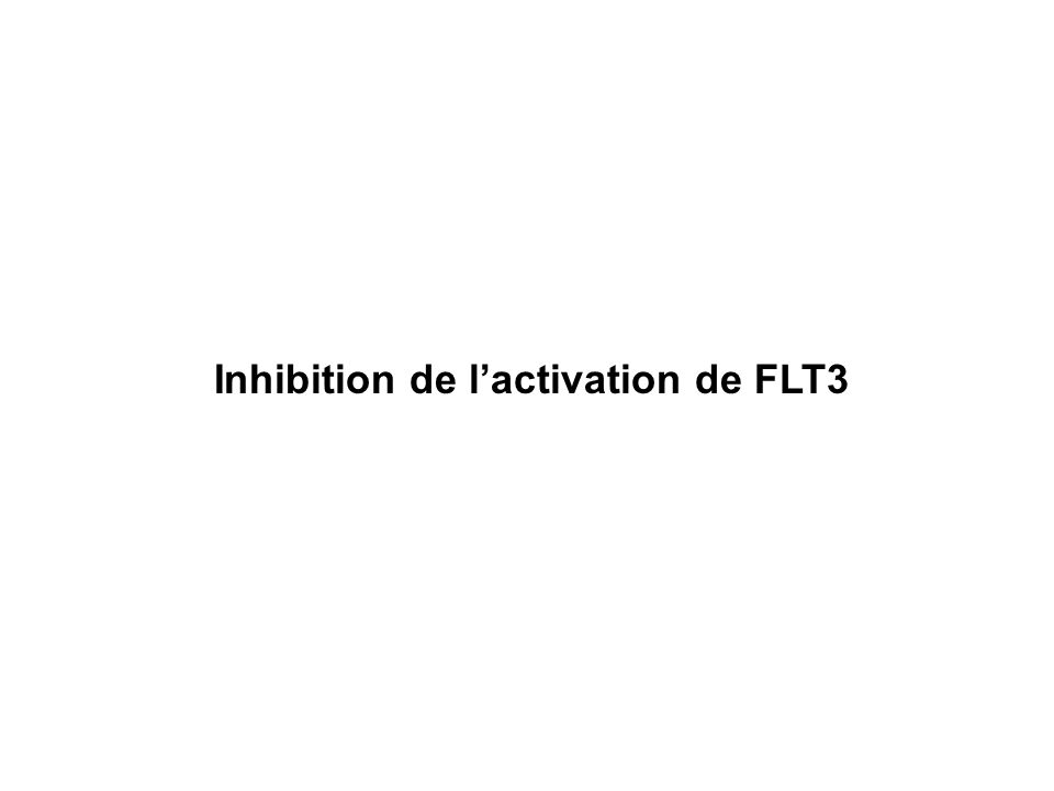 membrane cellulaire JM C-terminal Structure de FLT3 et mutations les plus fréquentes FLT3 ITD D835Y Duplication en tandem de la région juxtamembranaire