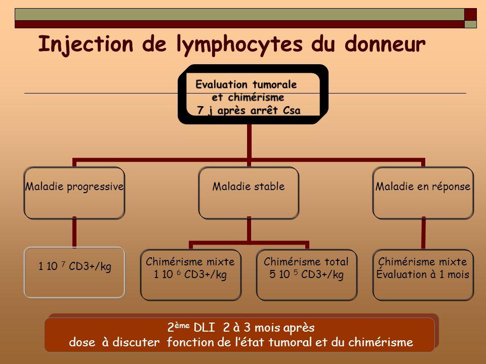 Evaluation tumorale et chimérisme 7 j après arrêt Csa Maladie progressive 1 10 7 CD3+/kg Maladie stable Chimérisme mixte 1 10 6 CD3+/kg Chimérisme tot
